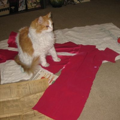 Scarlett Sews. Does Your Cat?