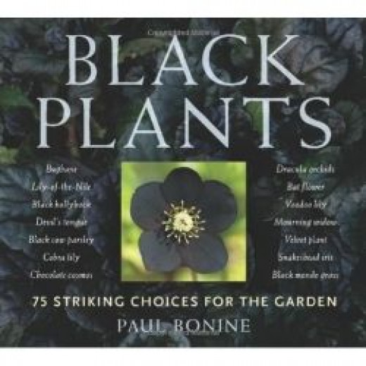 Close window Black Plants: 75 Striking Choices for the Garden