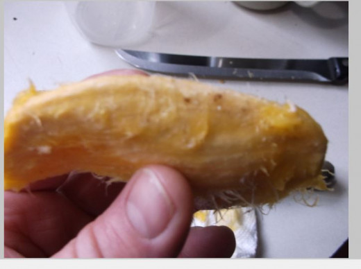 after removing mango fruit, run knife along edge of mango pit. You will need to pry the two sides apart.