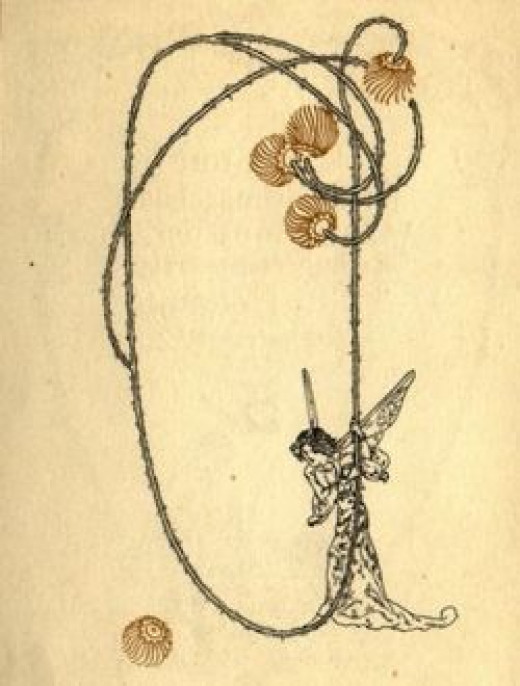 Fairy illustration by Willy Pogany, Hungarian artist