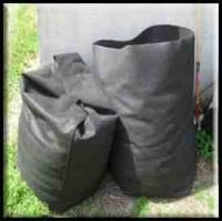 Bag up leaves to decompose over winter.