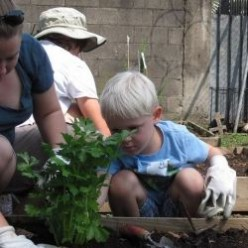 Homeschoolers Plan Their Own Garden Unit Study