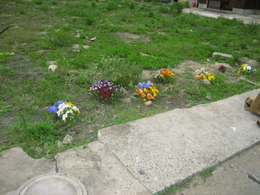 My first tell tale sign. Flowers placed here as a memorial site.