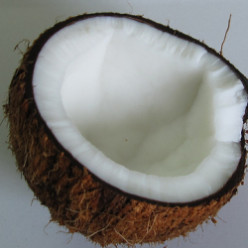 Grilled Coconut - This Fijian Treat Is Simple To Make