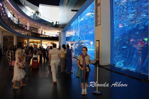 Worlds largest Aquarium in Dubai