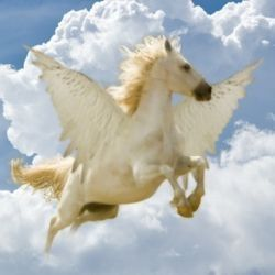 Pegasus, the Winged Horse