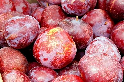 Plums at Alemany Farmers' Market