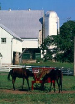 The Amish Farm and House is an authentic working farm from 1805