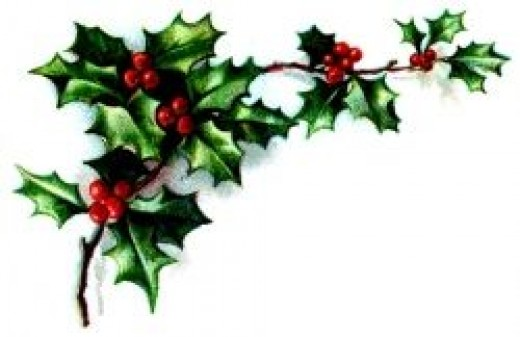 Bright red holly berries entwined in green. Holly is a traditional symbol of the holidays.