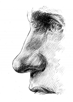 Human face focus on nose.