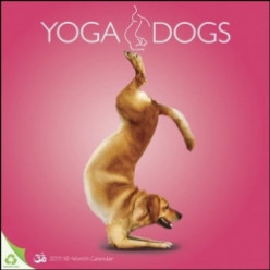Doga - Yoga For Dogs