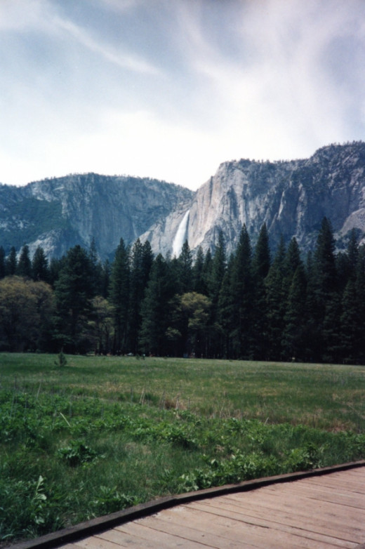 The meadow gives spectacular views of Yosemite Falls.