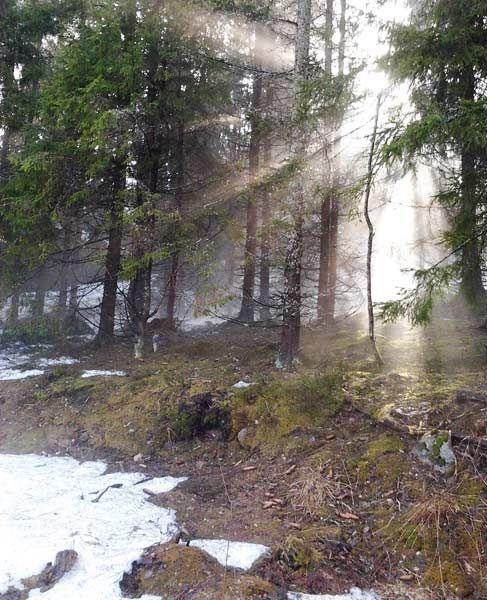 Melting snow creates fog in the warm air
