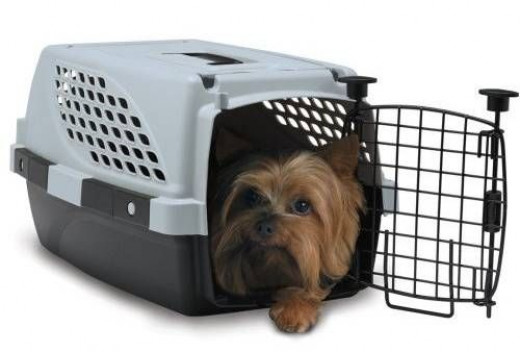Firstrax Pet Suites Double Door Multi-Use Pet Kennel
