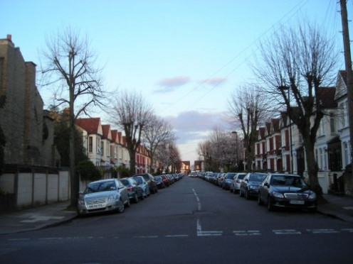 A Street of Pollarded Trees at Dusk in London