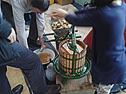More apples being loaded into apple press