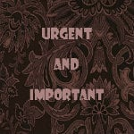 Do the things which are both urgent and important first