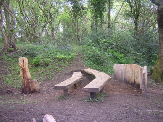 The story-telling place. Sit on the 'telling seat' and mesmerise your young listeners with a magical tale.