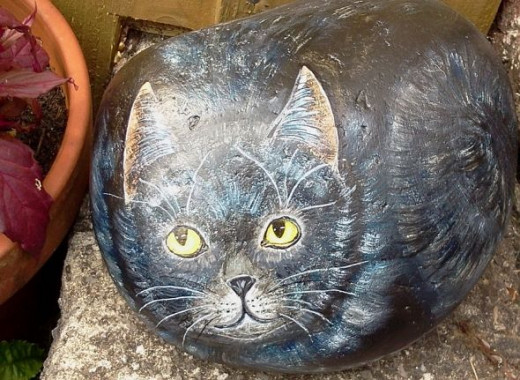 Comical rock cat