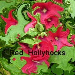 Photos of Red Hollyhocks and Simple Photoshop Tips