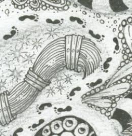 Zentangle 'first steps'