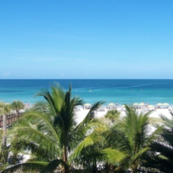 Siesta Key Beach voted #1 Beach in the USA