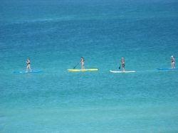 paddleboarding on siesta key beach
