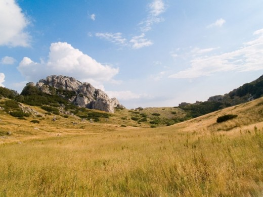 Further to the east, this zone of wilderness transforms into an area of milder forms around Malo Libinje and Veliko Libinje, karstic plateaus with numerous pits, the bottoms of which were mostly treated.