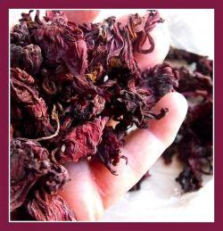 hibiscus tea in bulk
