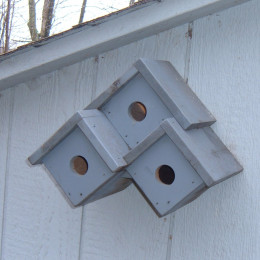 Birdhouse ideas three diy birdhouse plans for Song bird house plans