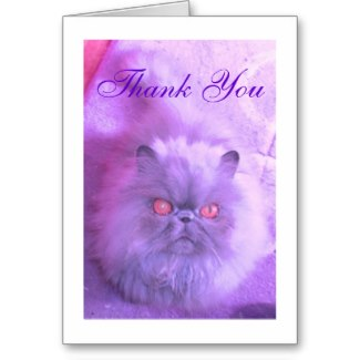 If you enjoyed browsing through my Persian pictures, why not follow the link to my Zazzle store where you can see more cat themed cards and gifts and explore gifts you can personalize.