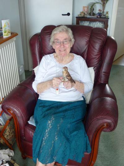 Mum loves her Goebel Thrush