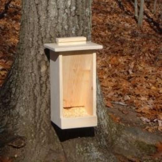 Deer Feeder Box