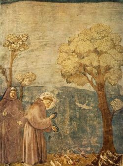 Number 15 in 'Scenes from Francis' Life by Giotto.  These may be seen in the upper Basilica of San Francesco d'Assisi
