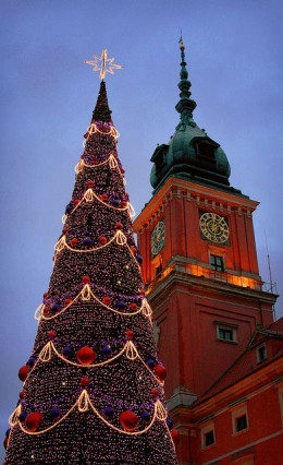 Christmas tree in front of Royal Palace, Warsaw - 2013Photo: Dan Ashbach