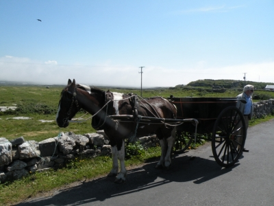 Pony and Trap Aran Islands