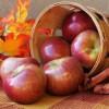 Autumn Apple Desserts