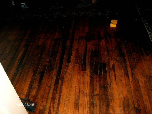 Renewing Our Hardwood Floor