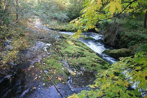 Millstone River, Nanaimo, BC