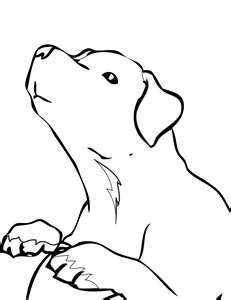 Labrador Retriever drawing courtesy of handipoints.com
