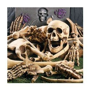 Halloween Decorating Bag of Bones