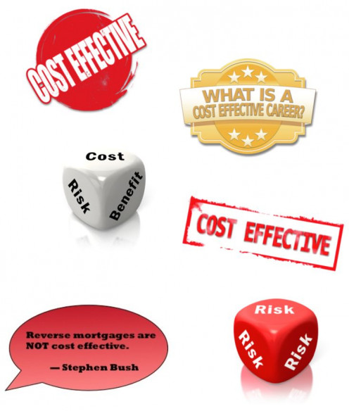 Cost-effectiveness and Risk