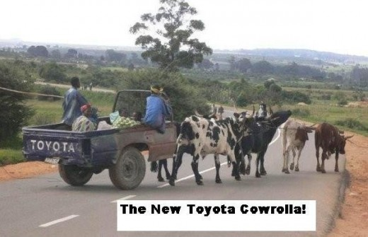 Japanese Vehicles Cowrola