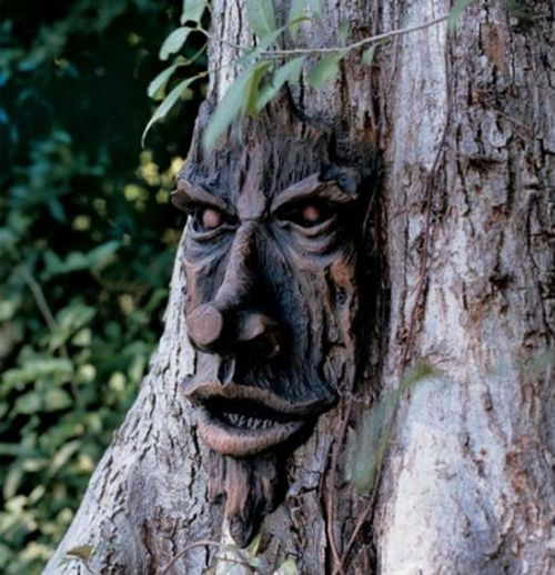 TreeSpirit-Nottingham Plaq on Amazon