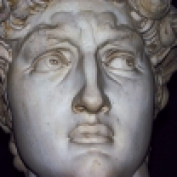 deanestella profile image