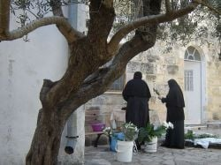 take thee to a nunnery