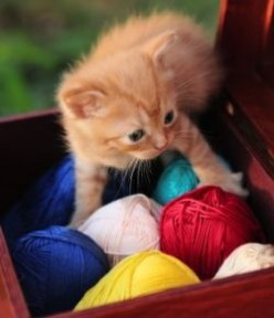 Knitting With Colors