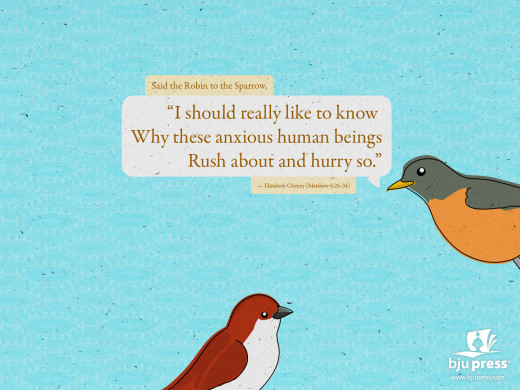 """""""Said the robin to the sparrow..."""""""