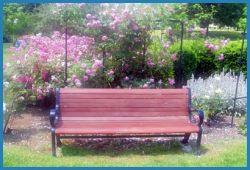 Botanical Garden - Rose Garden - Rochester, New York