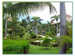 Gran Bahia Principe Ambar